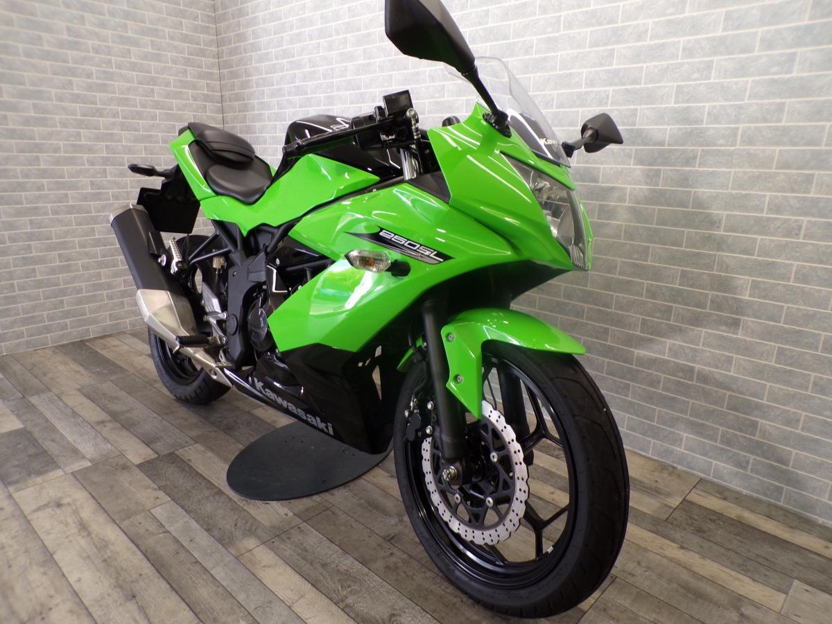 Kawasaki Z250 NINJA 2018