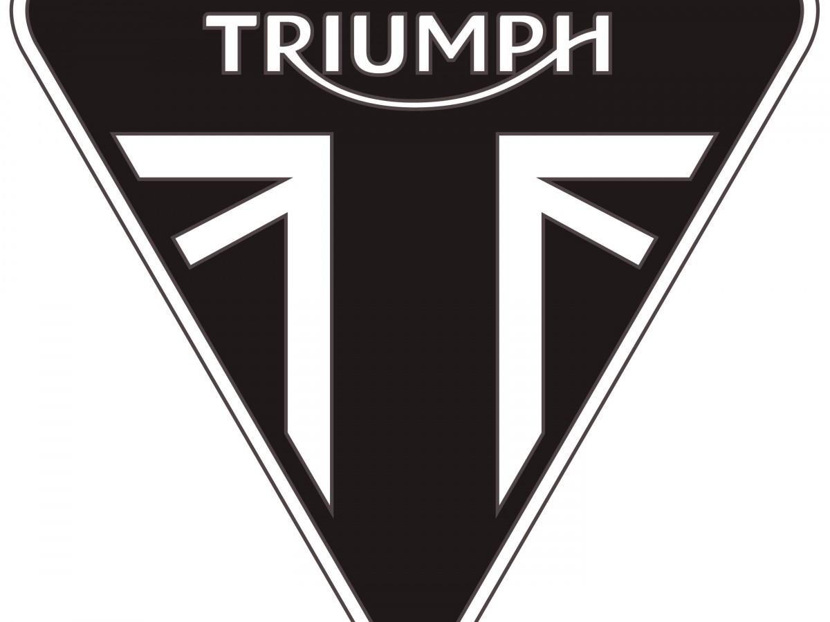 Buy Online TRIUMPH SPRINT ST 1050
