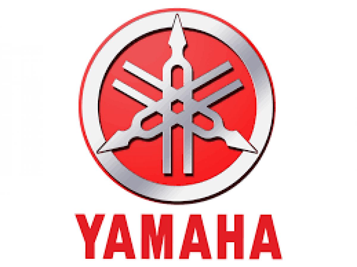 Buy Online YAMAHA XJR 1300