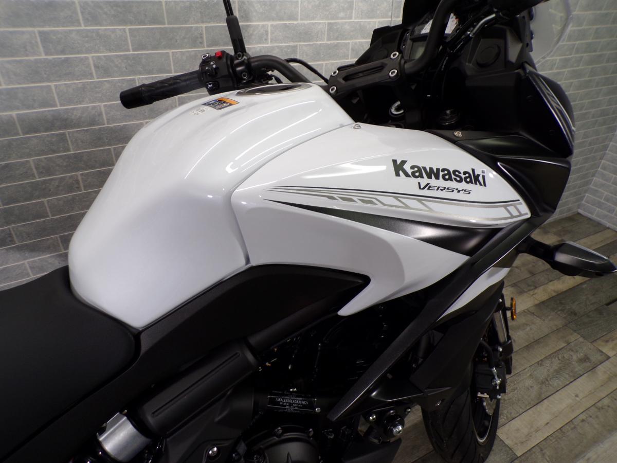 2020 KAWASAKI KLE650FLF DEMO