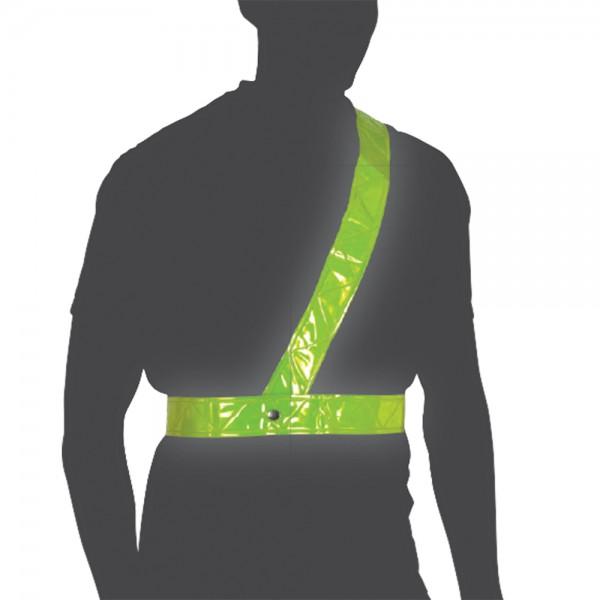 Oxford Bright Belt - Large
