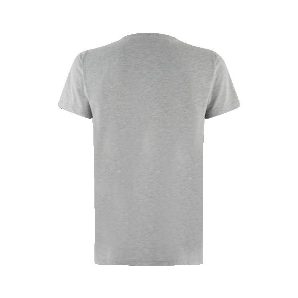 Kawasaki JPN T-Shirt Grey