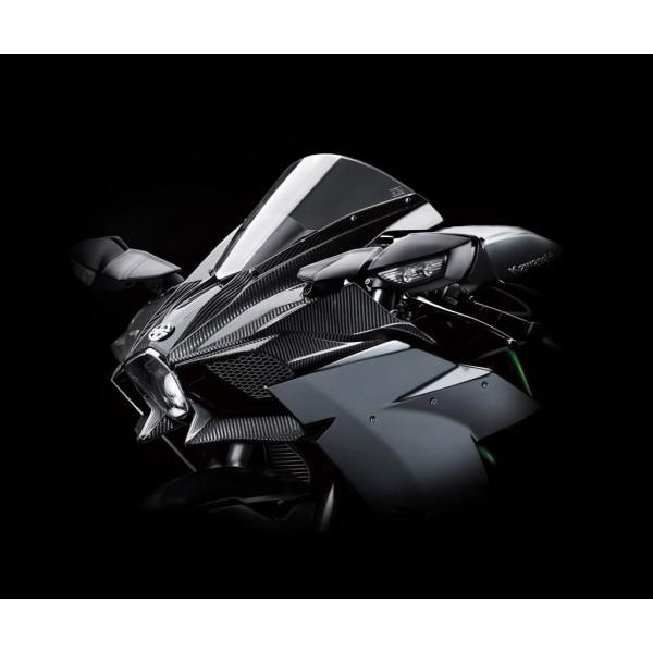 Kawasaki H2 Genuine Carbon Fibre Upper Cowling Kit