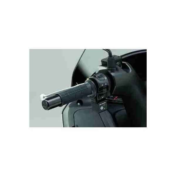 Suzuki Burgman 125 Genuine Heated Grip Set