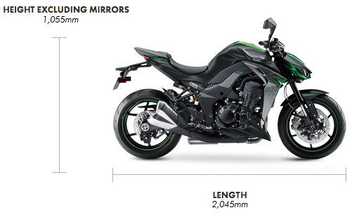 Dimensions Z1000R 67 Plate