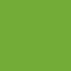 New Candy Lime GreenKawasaki Z250SL