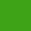 New Candy Flat Blazed GreenKawasaki Z300 Performance