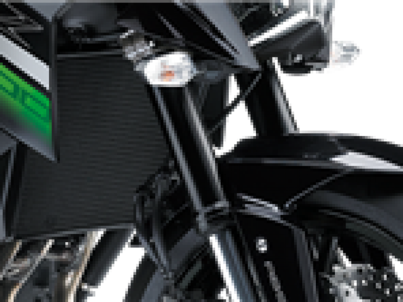 Kawasaki Z800E ABS   68 Reg 2018