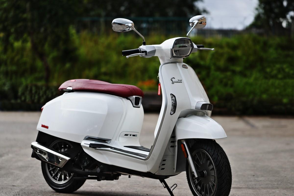 White Flex Fender V 125cc Special
