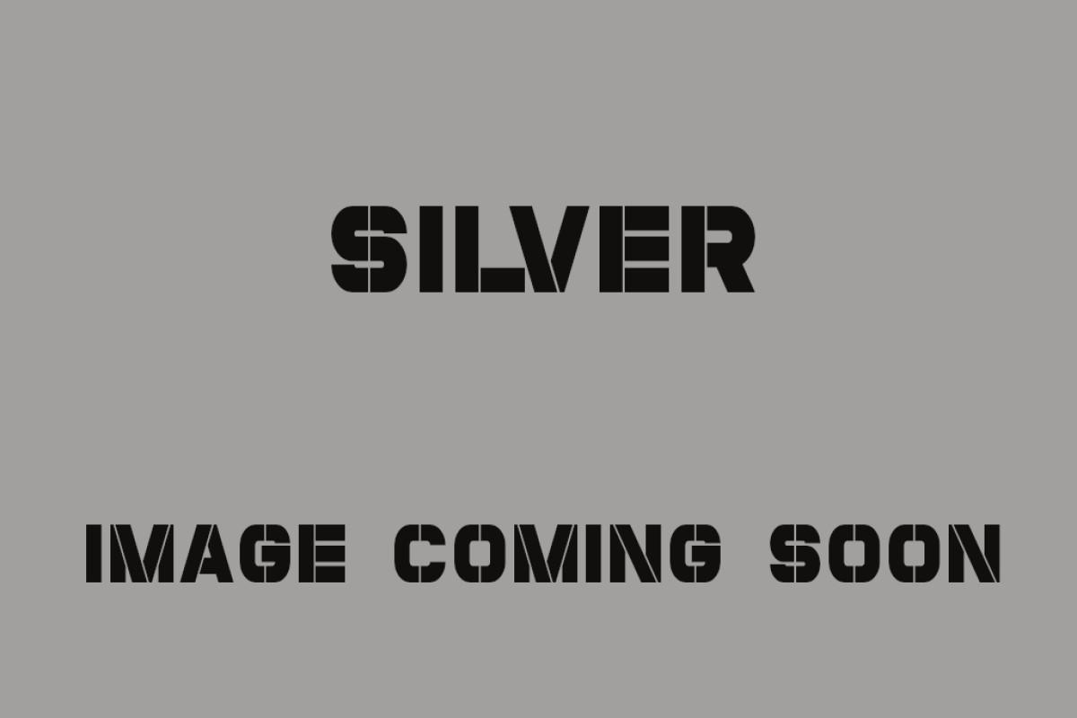 SILVER TG 125 AC CBS E5