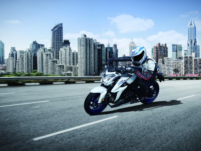 Suzuki GSX-S1000 ZAM0 2020 2020