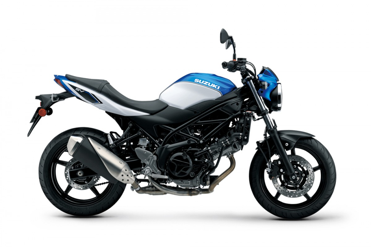 Blue/White SV650 AM1 2021